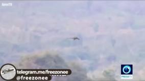 رویت اژدهایی در حال پرواز در کوه های چین