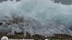لحظه یخ زدن دریای بالتیک از نگاه دوربین