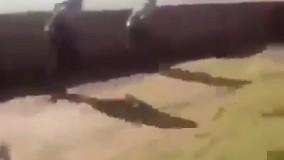کشته شدن  دو داعشی بدست سربازان  سوری