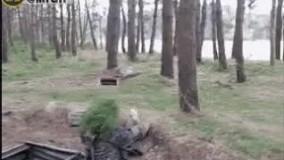 سرباز خنگ