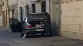 صحنه دلخراش کتک زدن سگ در گرگان