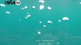 تصاویری کمیاب از خرماچینی در جنوب: زیبایی های جزیره هرمزگان در 200 ثانیه!