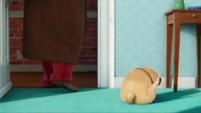راز زندگی حیوانات خانگی (The Secret Life of Pets)