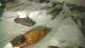 روایت دردناک حمله ناو آمریکایی وینسنس به هواپیمای مسافربری ایرانی در سال ۶۷