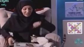 گربه دوید وسط برنامه زنده شبکه استانی سهند