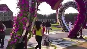 پارک زیبای قلب ها تقدیم به دوستانی که قلبی پاک و مهربان دارند.