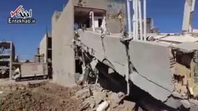 فیلم/ تلاش سگهای هلالاحمر برای نجات زلزله زدگان کرمانشاه