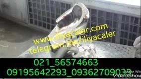 آبکاری فانتاکروم ایلیاکالر 02156574663