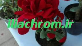 دستگاه کروم پاش فانتاکروم ایلیا 09127692842
