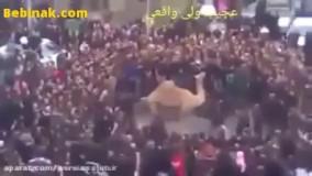 حمله شتر گردن زده به مردم