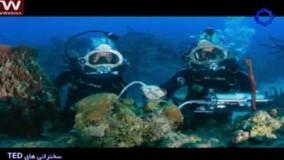 سخنرانی تد دوبله-آنچه من از ۳۱ روز زندگی در زیر آب یاد گرفتم