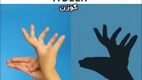 «بازی با سایه ها»؛ پیشنهادی جذاب برای کودک