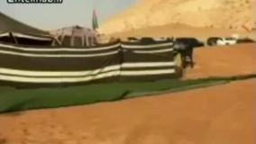 فیلم/ ماشین عجیب شیخ اماراتی