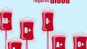 از کی خون بگیرم؟