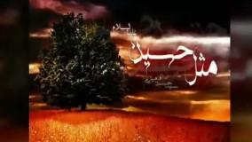 """سخنرانی تکان دهنده سیدحسن آقامیری """"مثل حسین"""""""