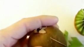 اموزش میوه ارایی (جدید)