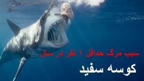 10 تا از مرگبارترین و خطرناک ترین حیوانات زمین