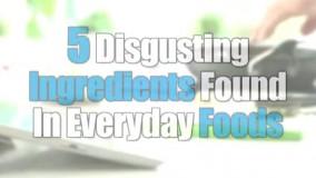 پنج ماده چندش آور در غذای روزانه ما