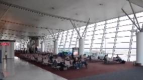 برهنه کردن زنان ایرانی در فرودگاه تفلیس گرجستان!
