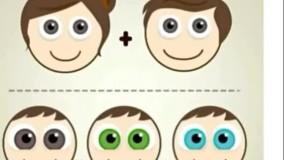 رنگ چشم پدر مادر و تاثیر آن روی چشم فرزند!