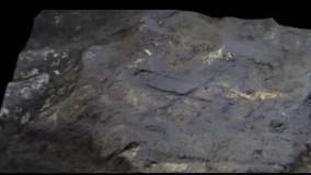 دیواره نگاری هایی کشف شده در جبل الطارق
