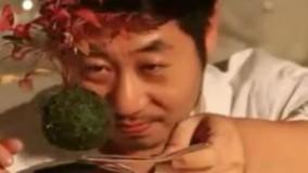 ژاپنی ها گلدان معلق ساختند!