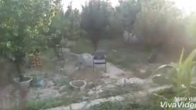 فروش باغ ویلا در شهریار