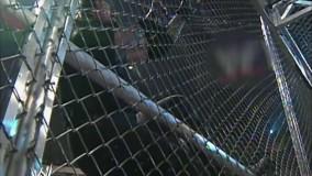 مسابقه کشتی کج آندرتیکر و منکایند در قفس