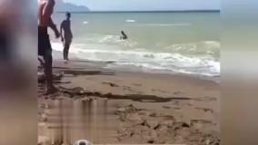 چه شنا ای میکنه این