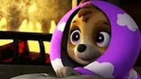 کارتون سگ های نگهبان قسمت 91 - انیمیشن سگهای نگهبان جم جونیور