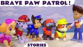 کارتون سگ های نگهبان قسمت 87 - انیمیشن سگهای نگهبان جم جونیور