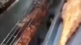 فیلم/ ویدئویی از کباب تمساح و مار!