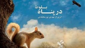 دانلود فیلم مستند زیبای ایرانی در پناه بلوط از شبکه جهانی جام جم