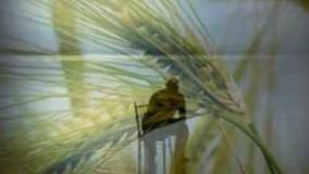بهشت از دست آدم رفت از اون روزی که گندم خورد ـ محمد اصفهانی