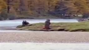 درگیری انسان با خرس (فان)
