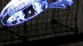 هنر نمایش جلوه های ویژه محصولات با دستگاه های هولوگرافی ایرویژن
