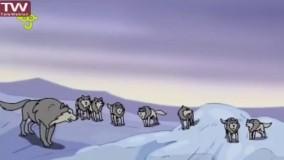تمام قسمت های کارتون پهلوانان فصل 1و2-گرگها