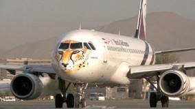 نقش یوزپلنگ در حال انقراض ایرانی بر روی هواپیما، تلاشی برای ارتقاء محیط زیست