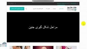 سایت حرفه ای، واکنشگرا و جذاب پزشکی – وبلاگ پزشک بروز