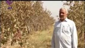 برنامه عطر آبادی-خراسان جنوبی-طبس-روستای دشتغران