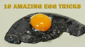ترفندهای آشپزی با تخم مرغ 2