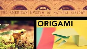 اموزش اوریگامی قورباغه-ویدیو های اوریگامی 13