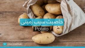 خاصیت سیب زمینی | Potato
