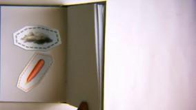 فصل اول کتاب سوره مهر