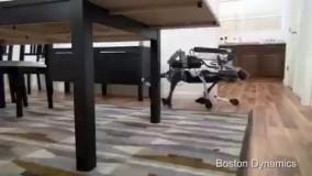ربات های ویشرفته