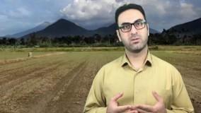 میخوای رژیم بگیری تا لاغر بشی!!! ولی نمیتونی برنج خوردنو ترک کنی!!
