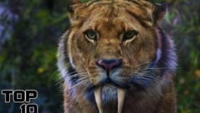 10 جانور منقرض شده که نباید دوباره به زندگی برگردند