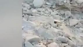 تصاویری از عملیات کشته شدن ابوبکر بغدادی