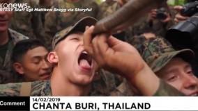 نوشیدن خون مار کبرا در تمرین نظامی تفنگداران دریایی آمریکا در تایلند