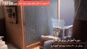 آموزش صفر تا صد پرورش انواع قارچ-09130919448